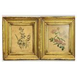 Pair Antique Framed Floral Prints