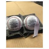 TO MY GRANDSON POEM BASEBALLS (DISPLAY)