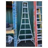 "8"" Orchard ladder"