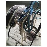 Cinches lead ropes halter