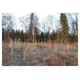 Nikiski/North Kenai AK Land For Sale Close Lake
