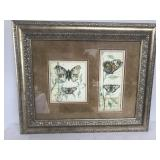 Tandem Butterfly Matted Artwork