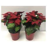 Pair of Christmas Poinsettias