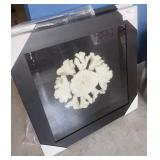 "FRAMED ECO CORAL ART SHADOWBOX ART 36"" X 36"""