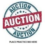 Place A Practice Bid Here
