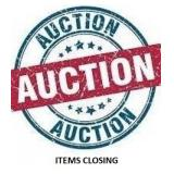 Information For How Lots Close On The  Auction