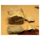 Four Fossilized Bones