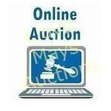Welcome To The Auction - Please Read!