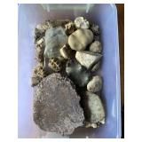 Container of Rocks/Fossils/Relics