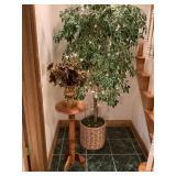 Plant, Stand, & Vase
