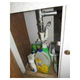 Loose Contents of Cabinet:  Cleaning Supplies