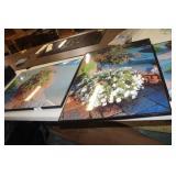 Prints 31.5x23
