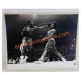 "Boxer Photograph 16""x20"" Newsday Photo"