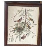 J.J. Audubon Off-Set Print Framed 23x19