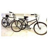lot of 2 Physio Fit Free Spirit bicycles