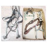Horse / Mule Tack