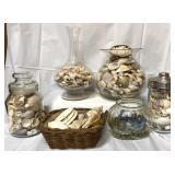 Seashells and vases