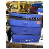 Lot of 3 Cases of Senteo Controllers