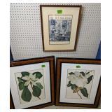 Pair Of Botanical Prints, The Sun Magazine