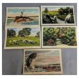5 Slaughter Beach Delaware Postcards