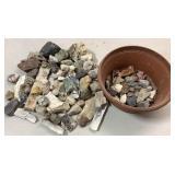 Petrified wood & Fossils & Misc Rock