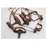 Assorted VICTOR Small Animal Traps