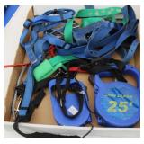 Bargain Lot: Dog Leashes and Collars