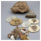 Rock Collection For the Rock Hound & Etched Belt