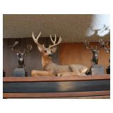 Whitetail Legends Buck Replicas (12) & ...