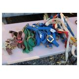 LARGE LOT OF NYLON COW AND HORSE HALTERS