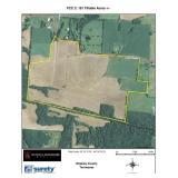 Tract 2 - FCC 2 - 181 Tillable Acres +/-