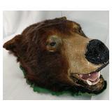 Taxidermy Bear head