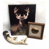 Deer/buck bundle