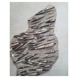 """Massive orthoceras fossil plate, over 30"""" wide"""