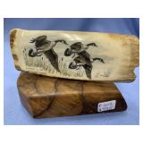Colored scrimshaw of Canadian geese on fossilized
