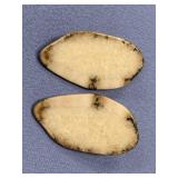 Pair of fossilized ivory earrings