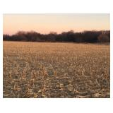 80.95 Acres Seward County, Nebraska Pivot Irrigated LAND AUCTION