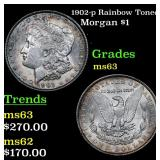 1902-p Rainbow Toned Morgan Dollar $1 Grades Selec