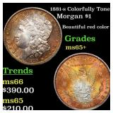 1881-s Colorfully Toned Morgan $1 Grades GEM+ Unc