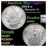 *Highlight* 1884-o Morgan $1 Graded ms66+