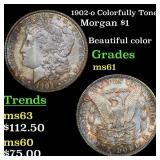 1902-o Colorfully Toned Morgan $1 Grades BU+