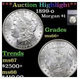 *Highlight* 1899-o Morgan $1 Graded ms66+