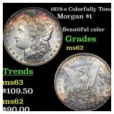 1879-s Colorfully Toned Morgan $1 Grades Select Un