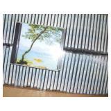 Craig Donaldson CD