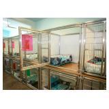 Pet Resort, Premium Kennels, CLEAN!