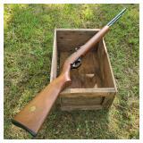 Marlin Model 60w .22 Rifle