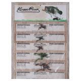 NOS Card of Green River Sensational Fish Catchers