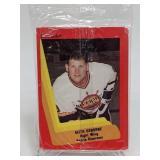 1990 - 91 Unopened Peoria Riverman - IHL Team Set