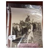 Lot of 5 Vintage B&W Horse Photos