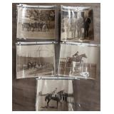 Lot of 5 Vintage B&W Horse Pictures